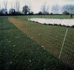 EURO elektromos szárnyas háló, 9 oszloppal, 25 m hosszú.